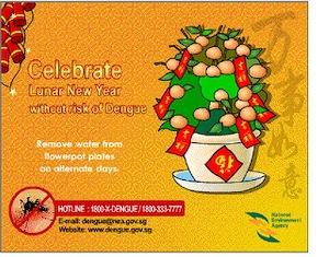 Dengue Card
